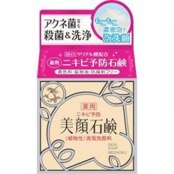 Meisyoku Light Color Cosmetics...
